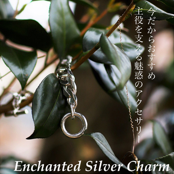 SP-Enchanted Silver Charm-
