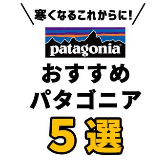 <パタゴニアおすすめ5選>寒くなるこれからにぜひ!