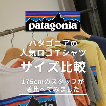【Patagonia】定番Tシャツ着比べてみました!