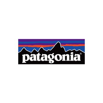 【patagonia】春夏おすすめTシャツ