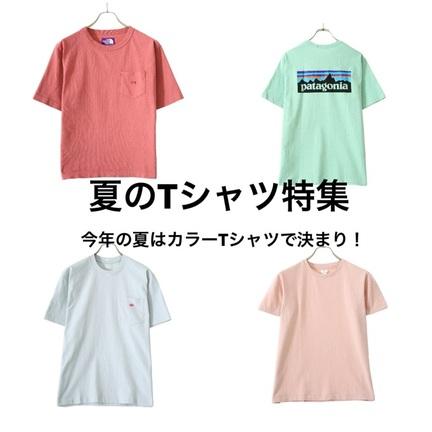 夏らしいTシャツ入荷してます!