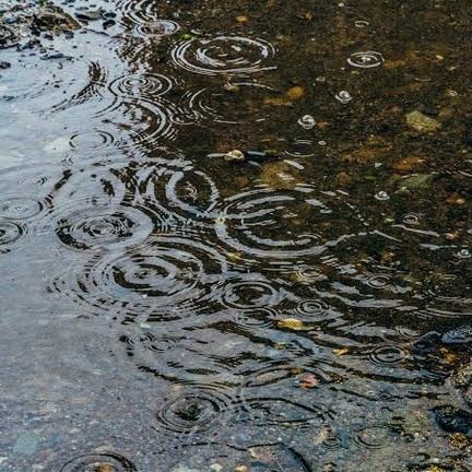 雨の日に大活躍なあのシューズ