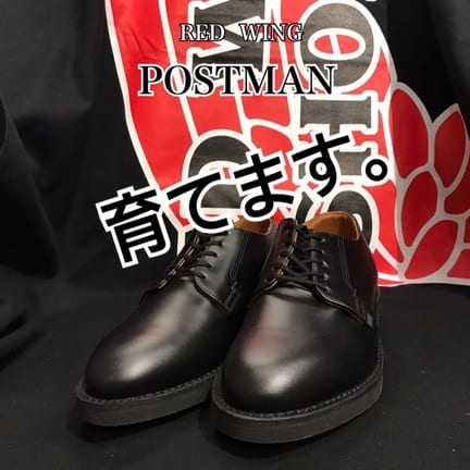 【RED WING】101買いました!