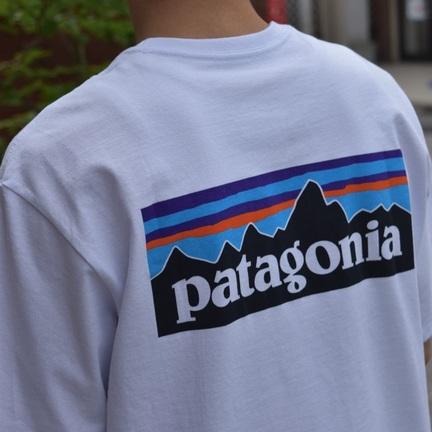 Patagonia定番Tシャツ