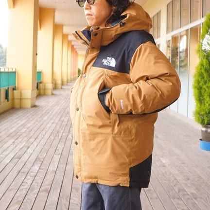 THE NORTH FACE / Mountain Down Jacket
