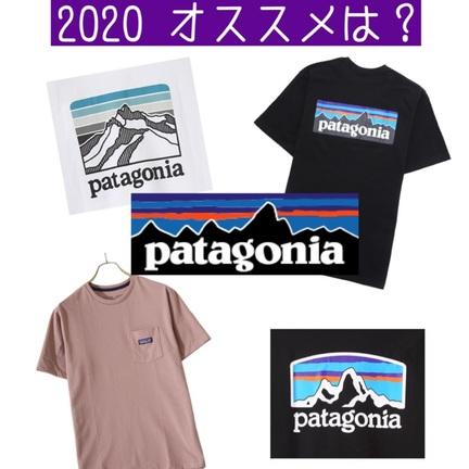 パタゴニア Tシャツ揃ってます!