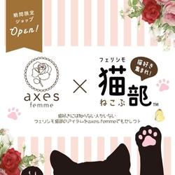 3/7まで期間限定♡フェリシモ猫部♡最終日