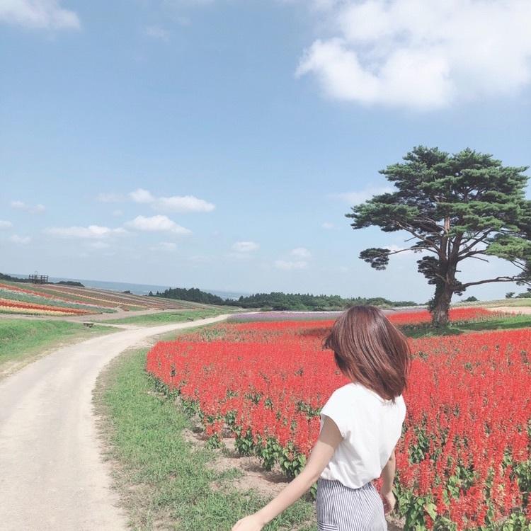 【SET UP】バックコンシャスブラウスワンピース×プリーツスカート